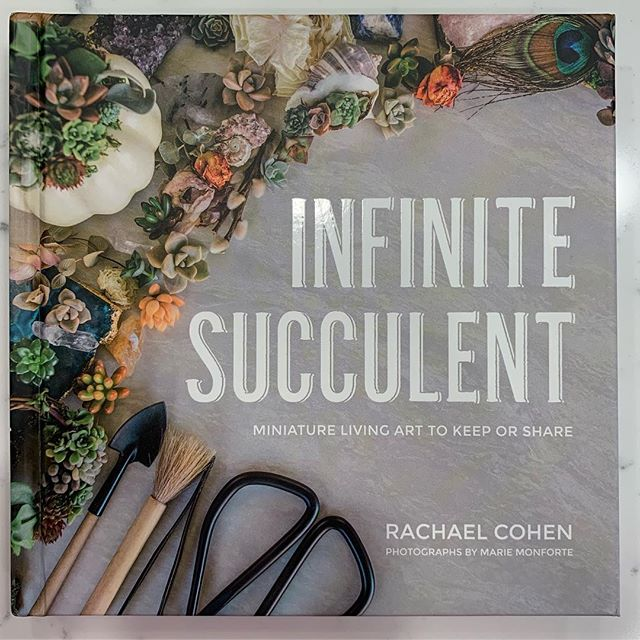 Found out that @infinitesucculent will be at Barnes and Noble on Saturday March 9, from 11am-1pm! (She also does Botanical Styling!) #homeofthehappyteeth #encinitaspediatricdentistry #warnerpediatricdental #succulents