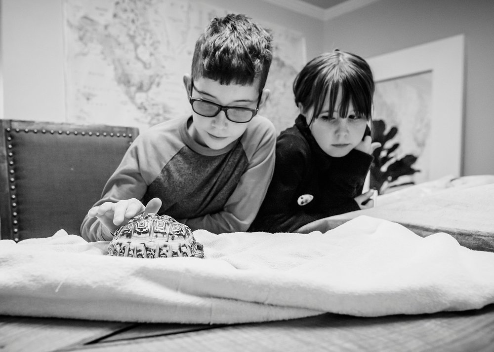 Our son is really into reptiles and I hate them, so we hired an expert to come and teach them.  Unschooling freedom!! | GettingUnschooled.com | Week in the Life of an Unschooler