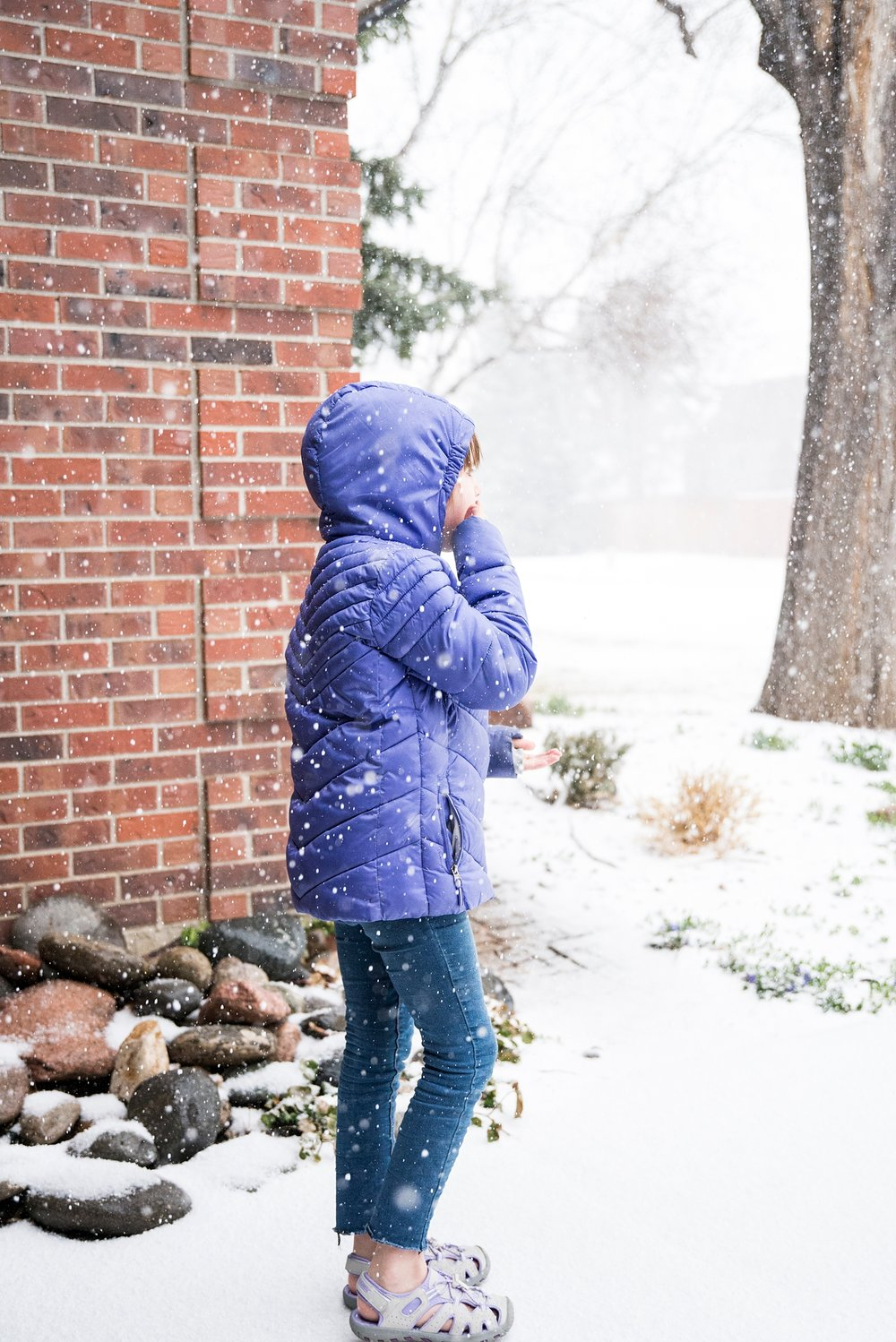 Spring in Colorado is all over the place--which makes life a little more interesting :) More from our Week in the Life of an Unschooler is on the blog!