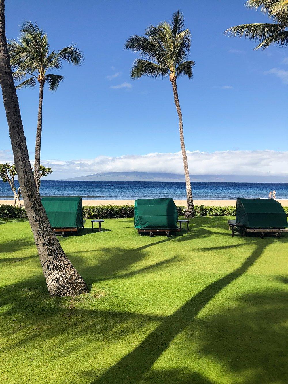 Maui-24.jpg