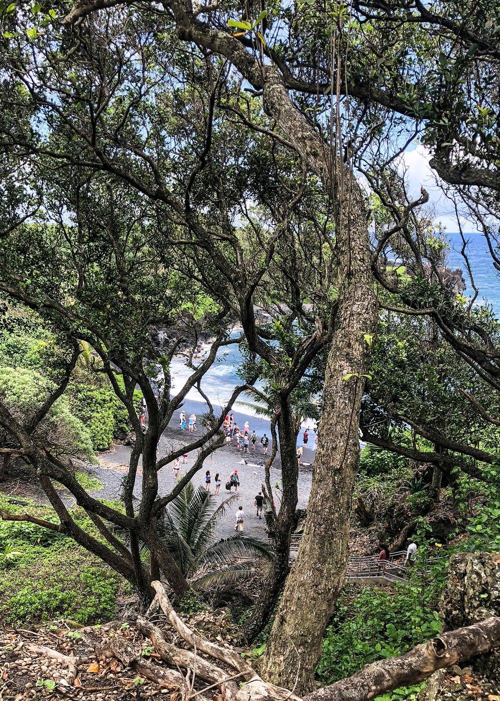 Maui-38.jpg