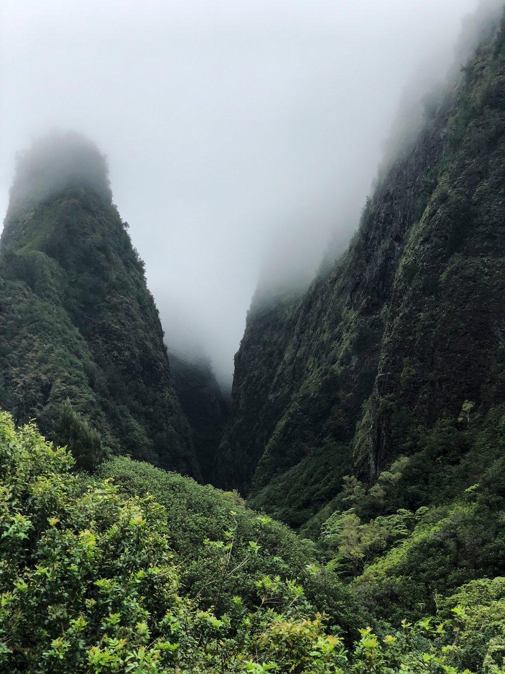 Maui-67.jpg