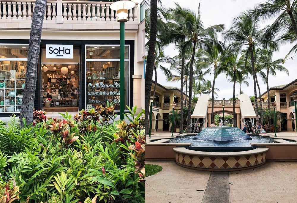 Maui-72.jpg