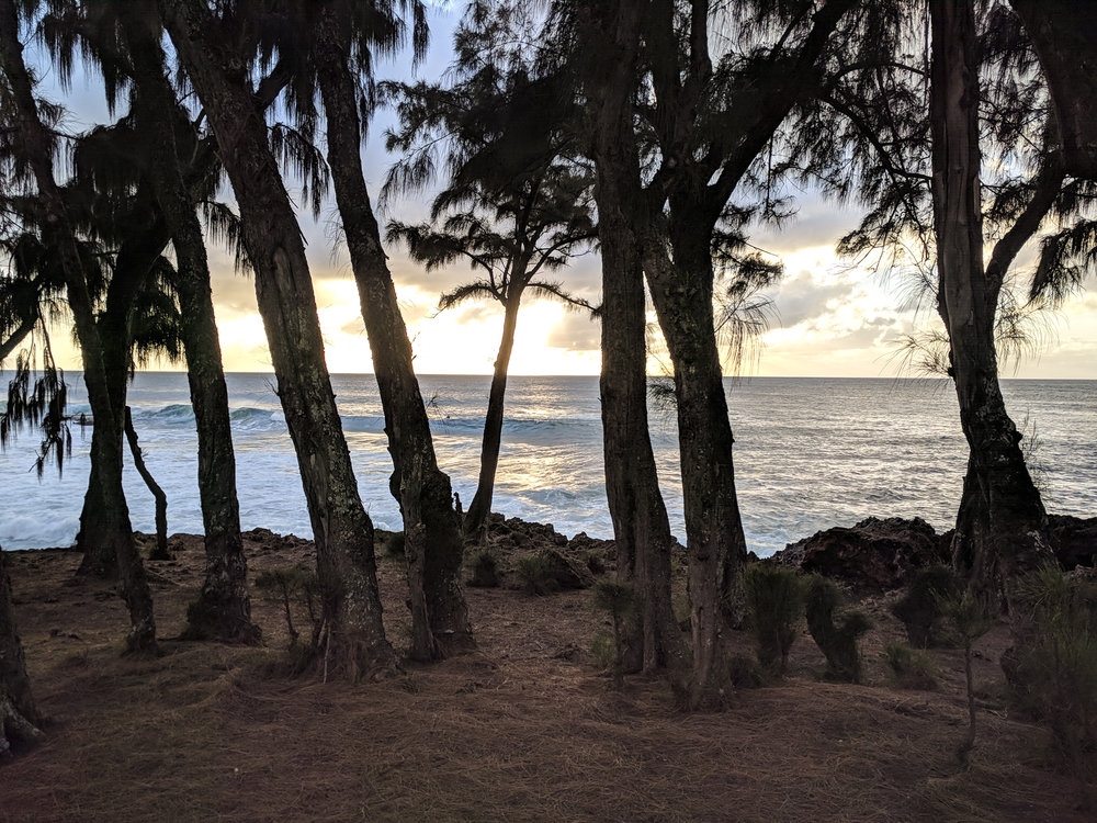 Maui-1-5.jpg