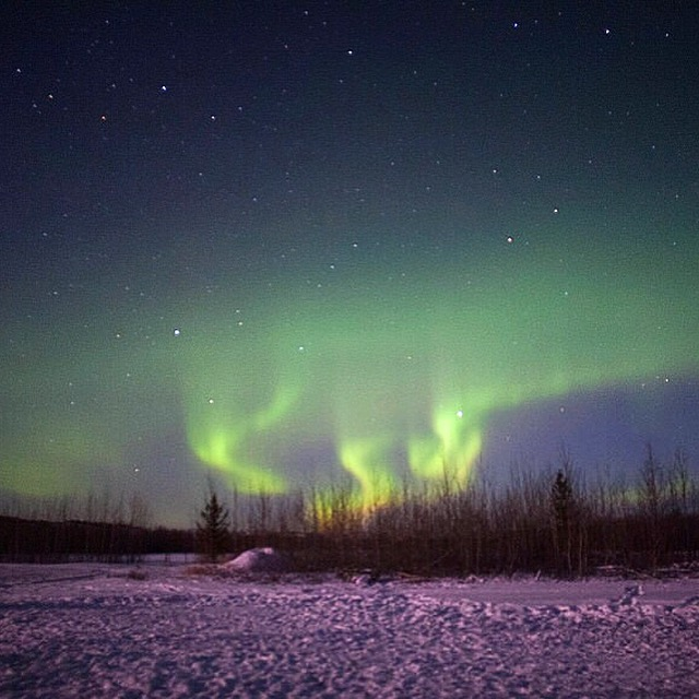 The dancing Aurora on our first night in The Yukon. Photographing the Northern Lights is a feat in and of itself.