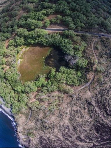 Nuu aerial 2