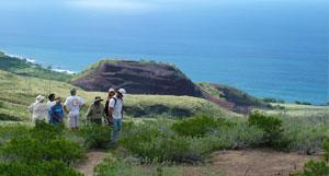 Maui-MakilaNuiLauniopoko.jpg