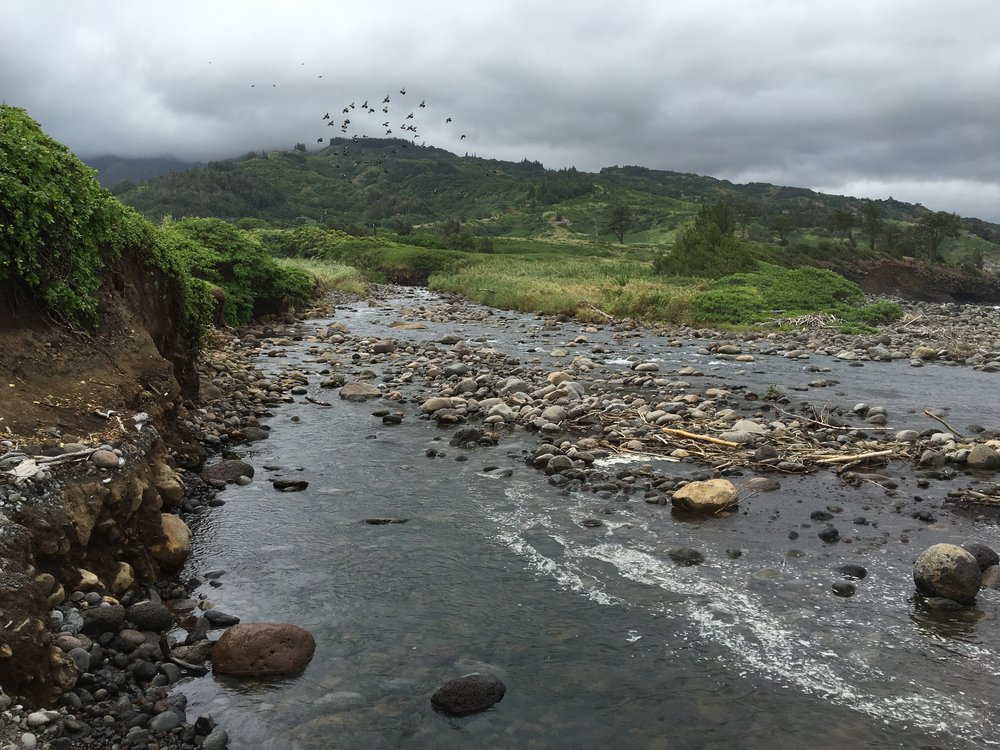 Waihe'e Stream - Part of  Na Wai 'Eha  (The Four Streams)