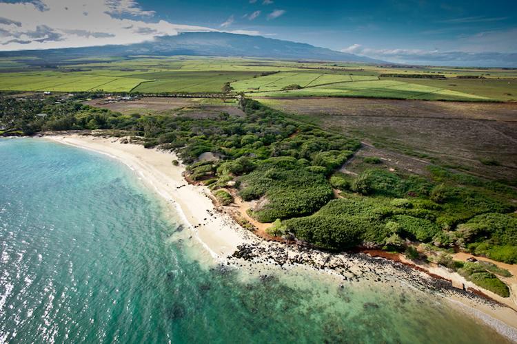 Maui-CampOneSprecks.jpg