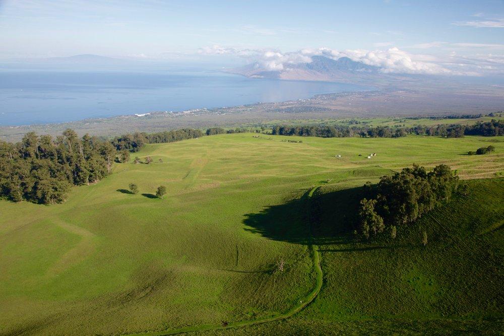 Maui-Ulupalakua.jpg