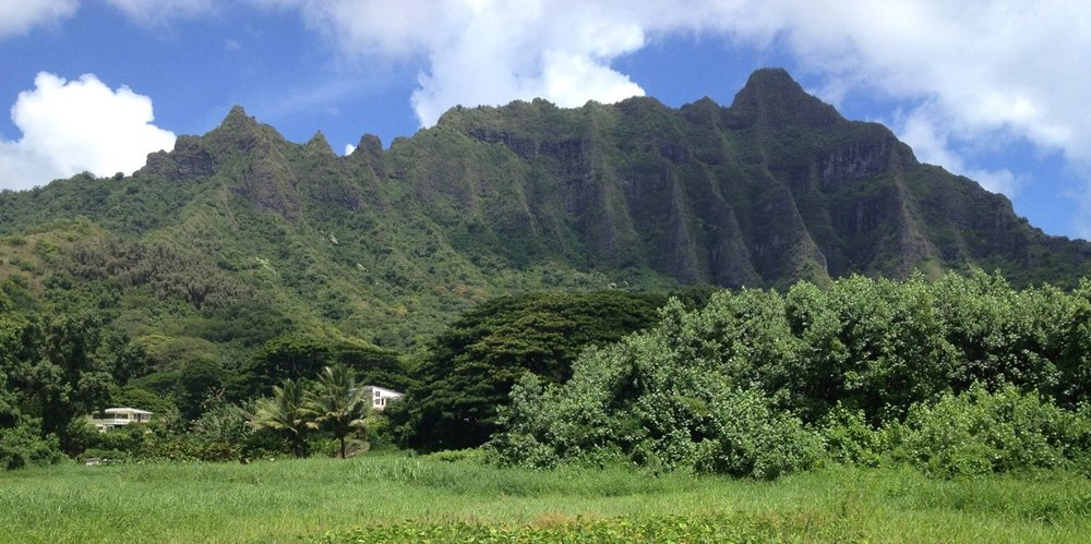 Hakipu'u, O'ahu (Photo courtesy of TPL)