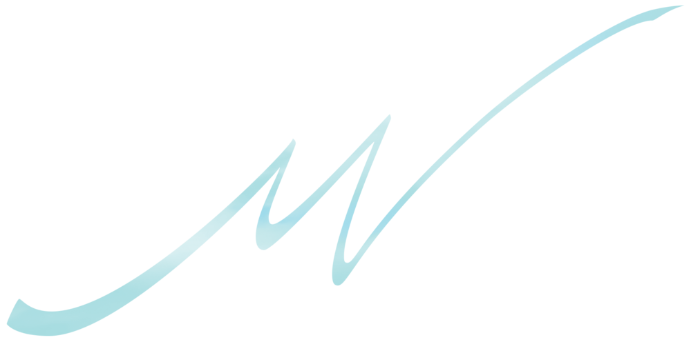 Mark VanDonge Photography Signature Logo crop 1.png