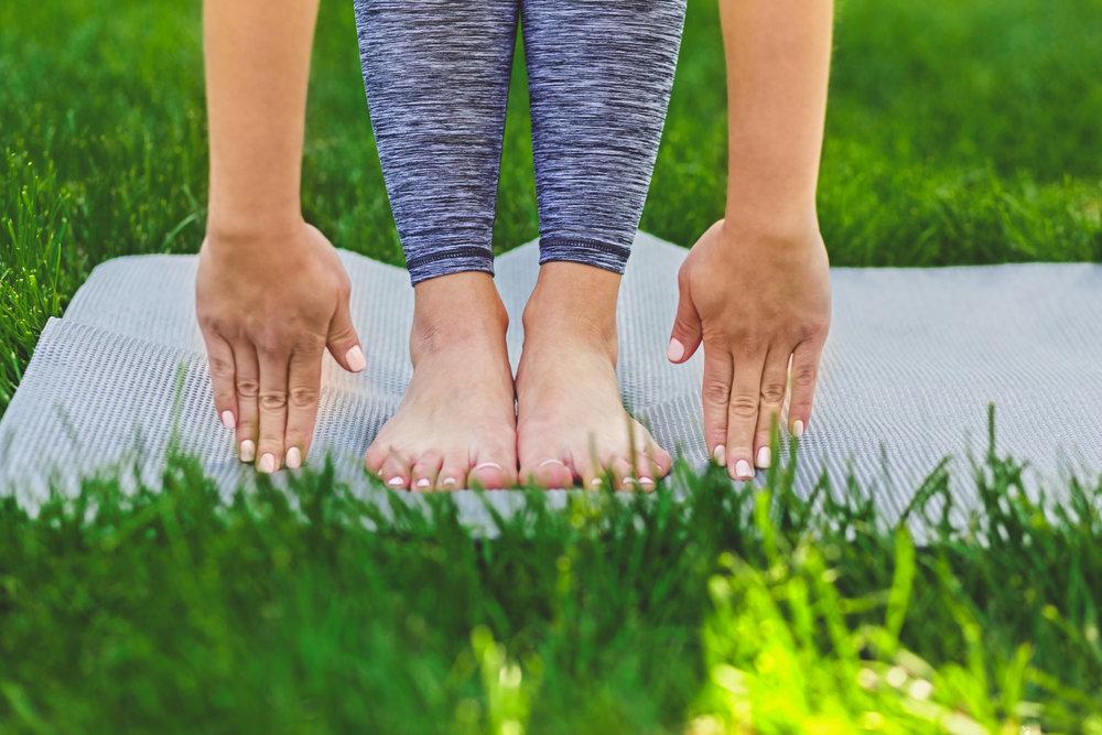 Yoga Camps -