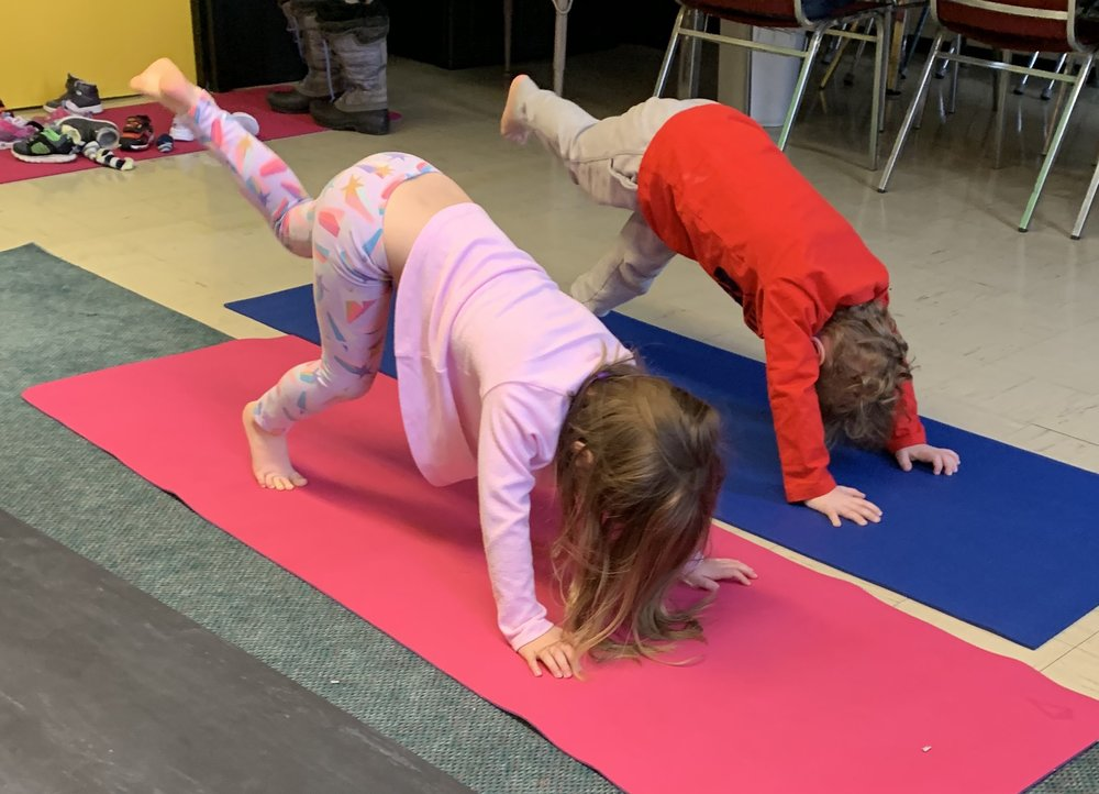 Strong 3-legged dogs at one of our Yoga for Preschool programs!