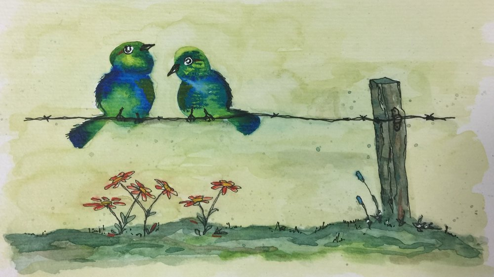 Birds on Barbed Wire.jpg