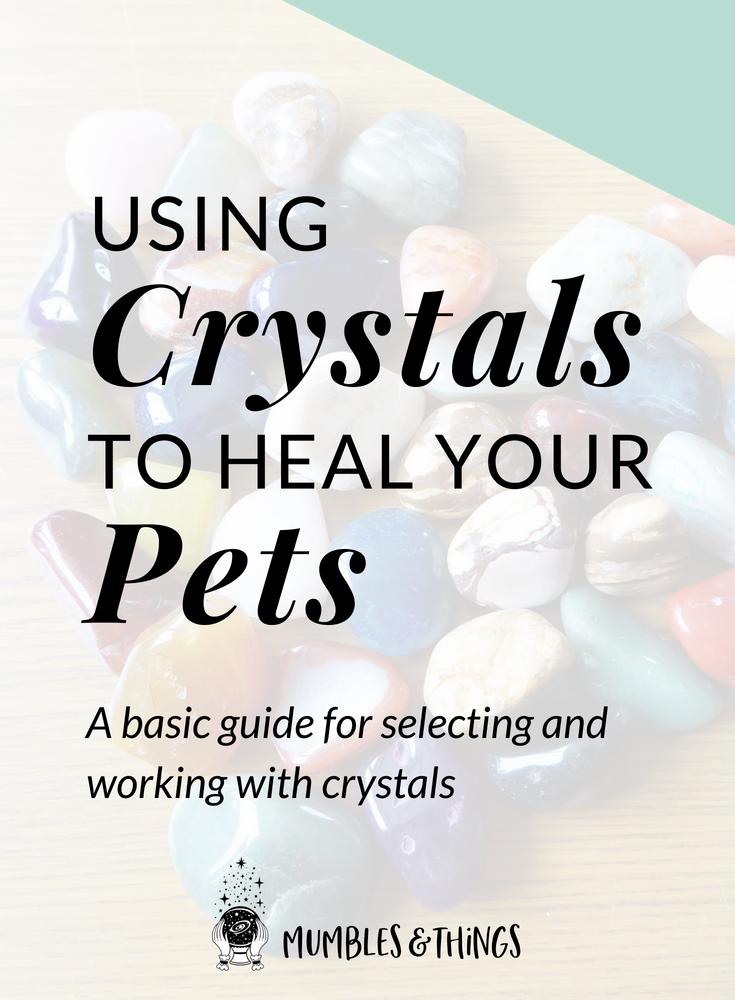 crystal-healing-pets.png