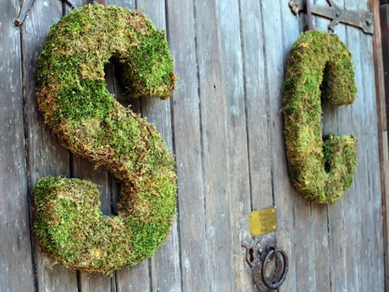 Moss covered letters.