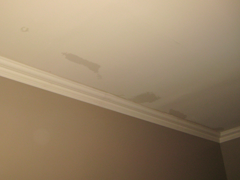 Ceiling damage on the fist floor.