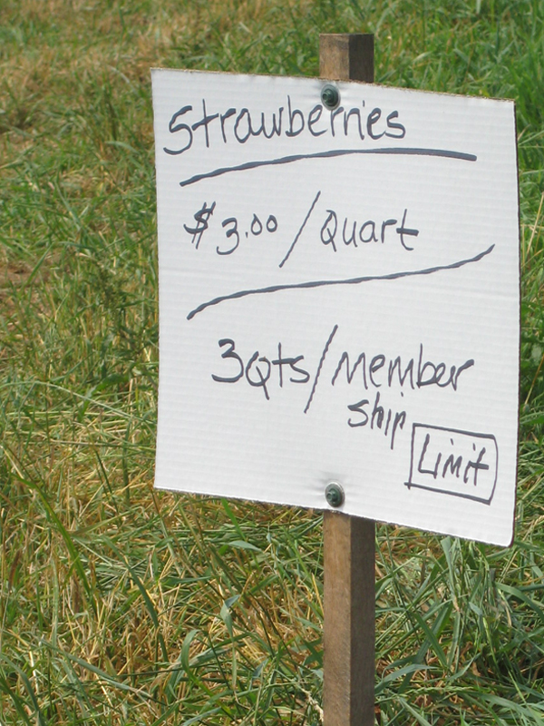 A hand written strawberries sign.