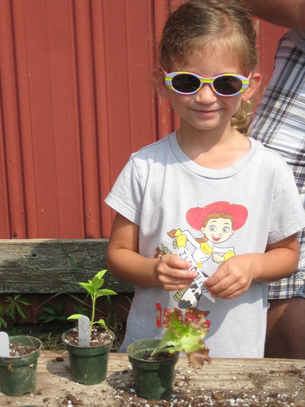 Isabella planting herbs.