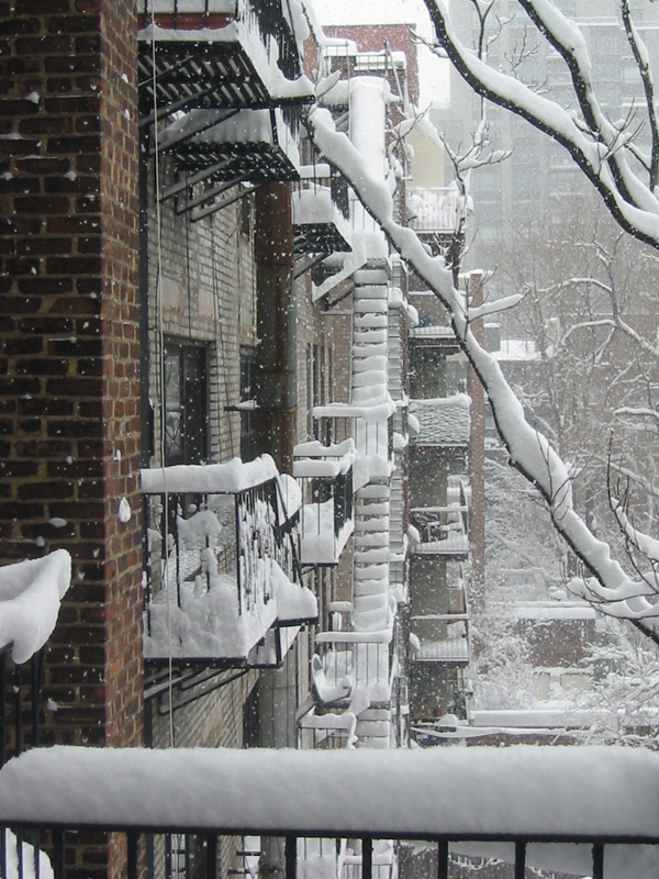 Snow covered fire escapes.