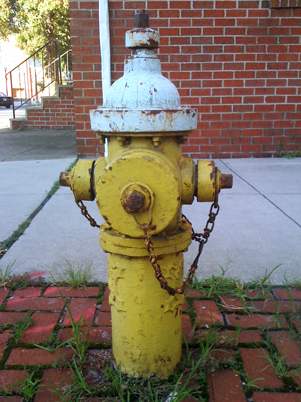 Before photo of our hydrant.