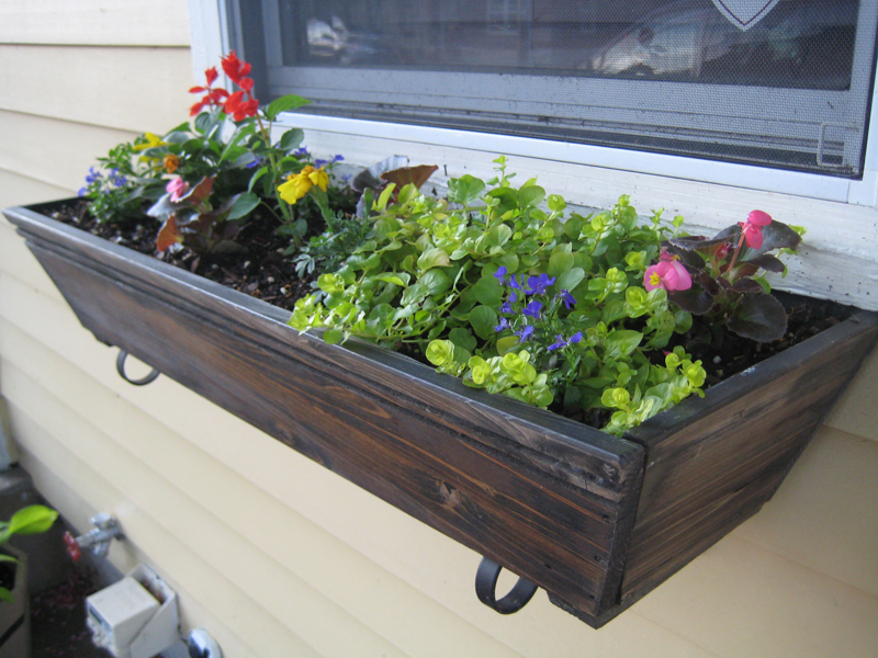 Flowers in wooden flower box.