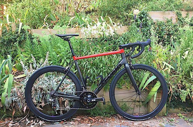 Another fine  @knightsofsuburbia team builds.  Rider @david_rigney  Bike @cerveloaus R5 Groupset @sram_australia Red 22 @zippspeed cockpit & seat post  Build by @cyclehouseaus  Wheels @baroncycling 4.5 w DT350 hubs Team @knightsofsuburbia • • #baroncycling #wheelsbybaron #kos #knightsofsuburbia #cervelor5 #bikelife #bikeporn #baaw #bikesofthebunch #buiitforspeed