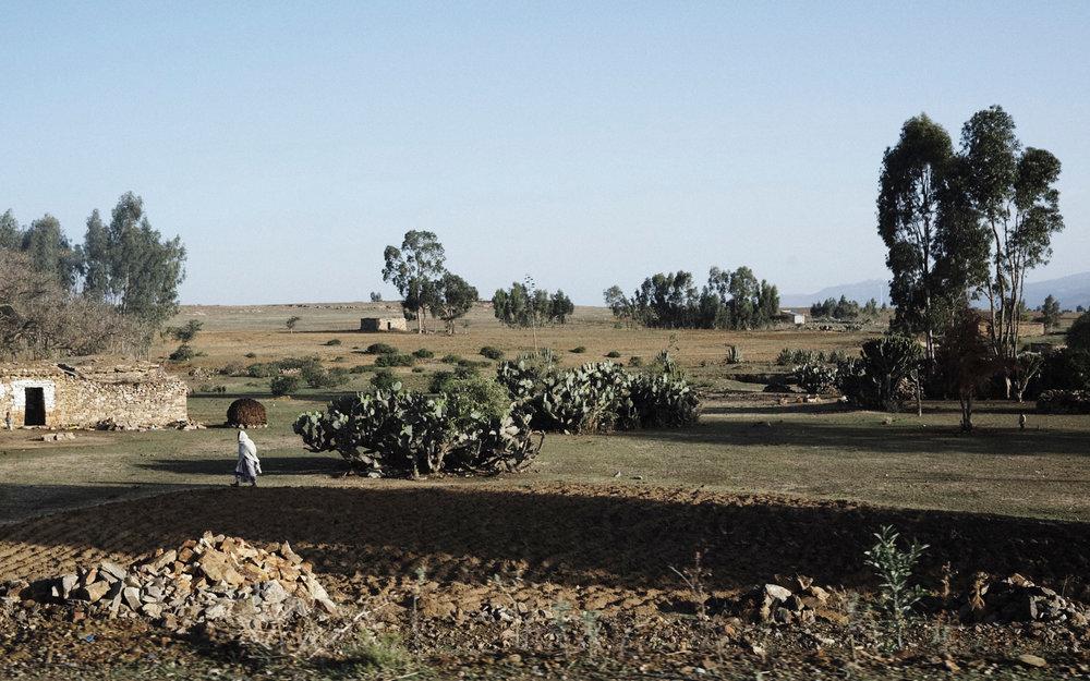 ETHIOPIA_JAMESWHITTY18.jpg