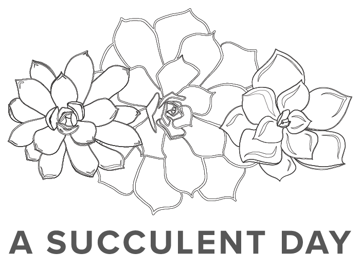 A Succulent Day