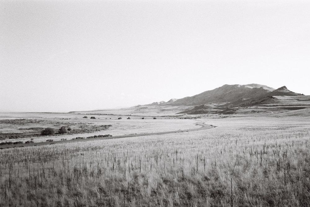 bradenyoung_hickenloopers-88.jpg