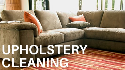 Upholstery Cleaners Madison WI Phenomenal.jpg