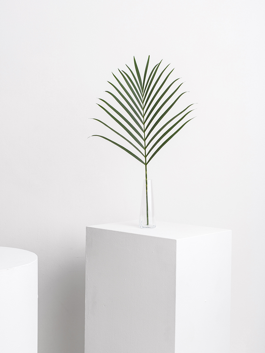Pause for Harmony designed by Issey Miyake & Iittala