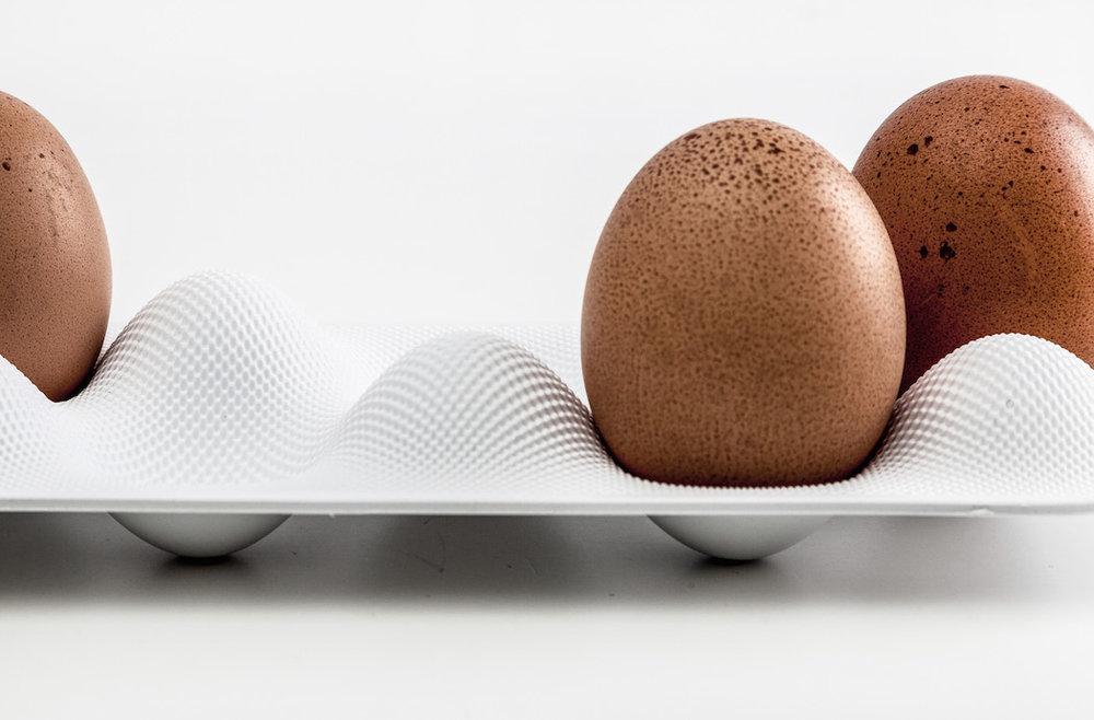 Eggwave designed by WertelOberfell