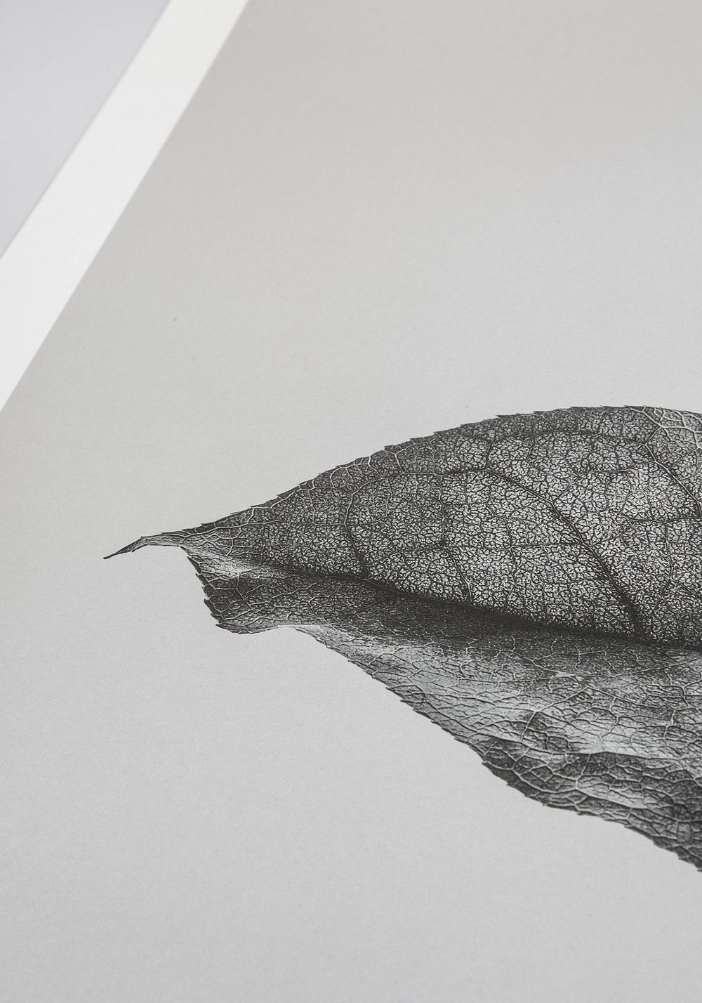 Sabi Leaves created by Norm Architects and Paper Collective