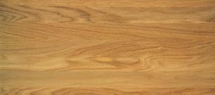 Oak Oil