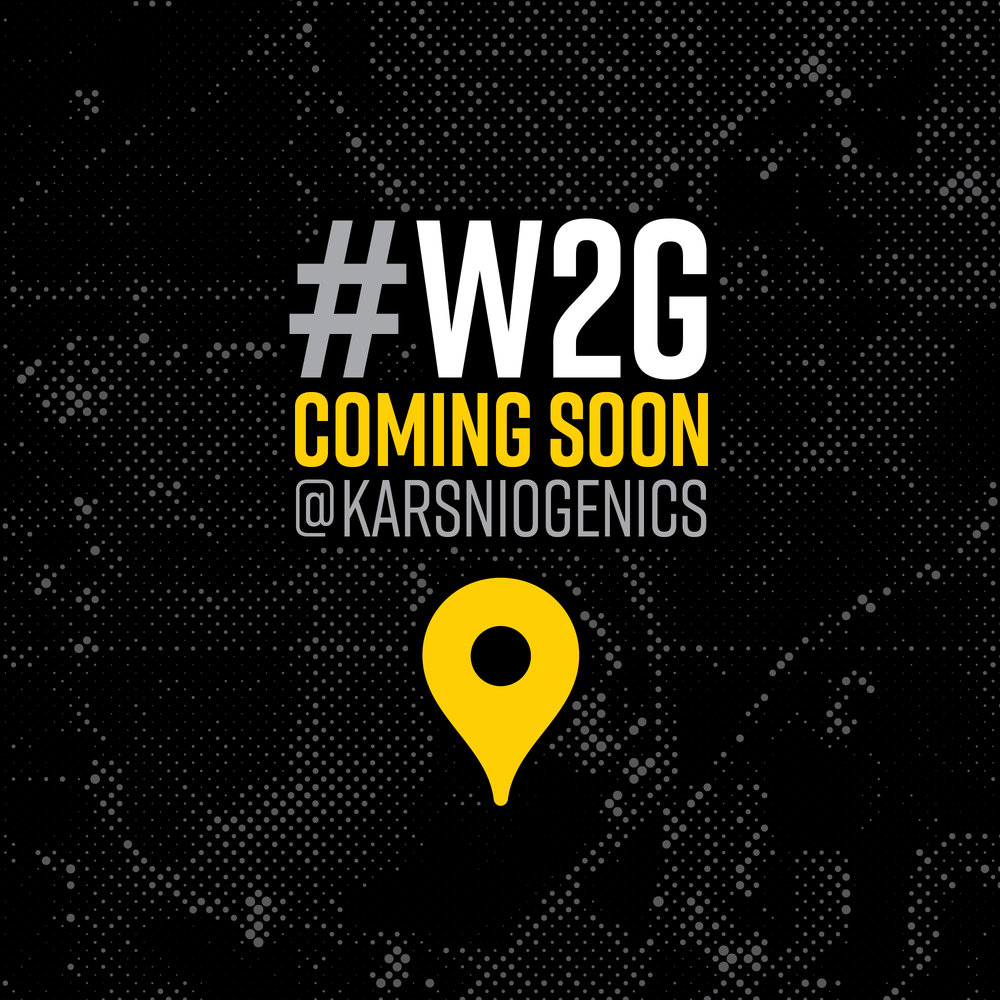 1.1 W2G Coming Soon INSTA.jpg