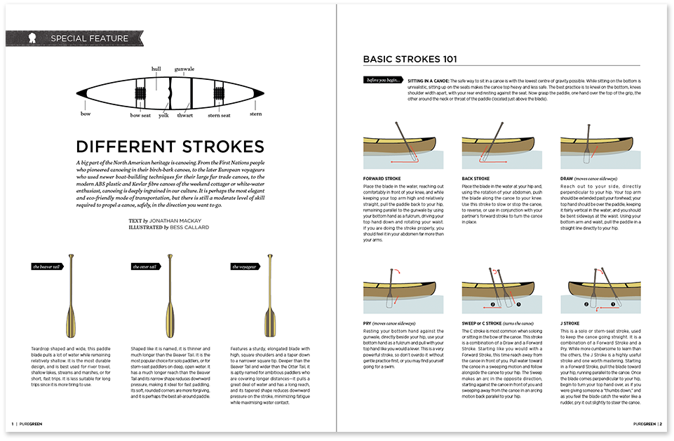 Paddle-strokes-image2.png