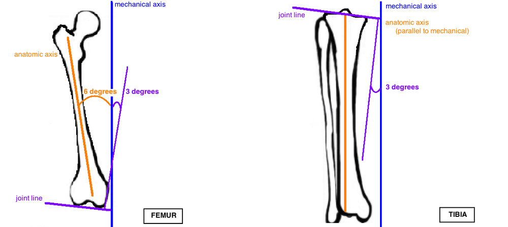 mechanical axis compared to anatomic axis in knee