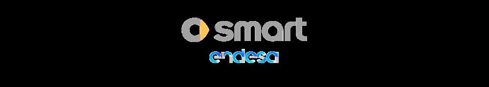 smart endesa logo.png