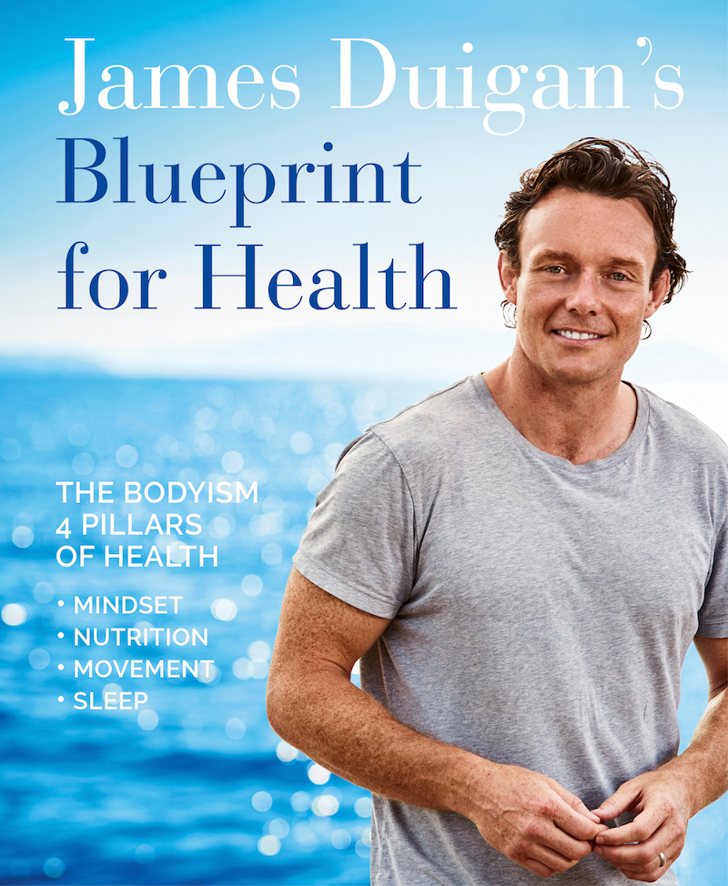 Book review blueprint for health by james duigan mid life edit book review blueprint for health by james duigan malvernweather Image collections