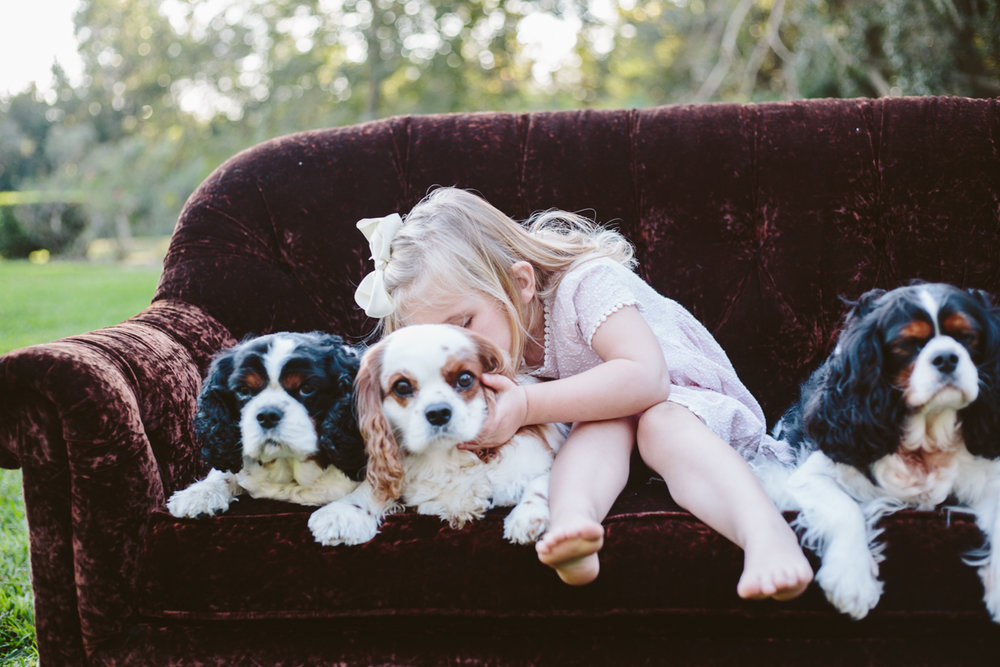 family, extended, summer, spring, sunset, outdoors, poses, ideas, outfits, large, field, inspiration, with older kids, with toddler, color scheme, white, creative, siblings, big, natural light, light and airy, photoshoot, lifestyle, dogs