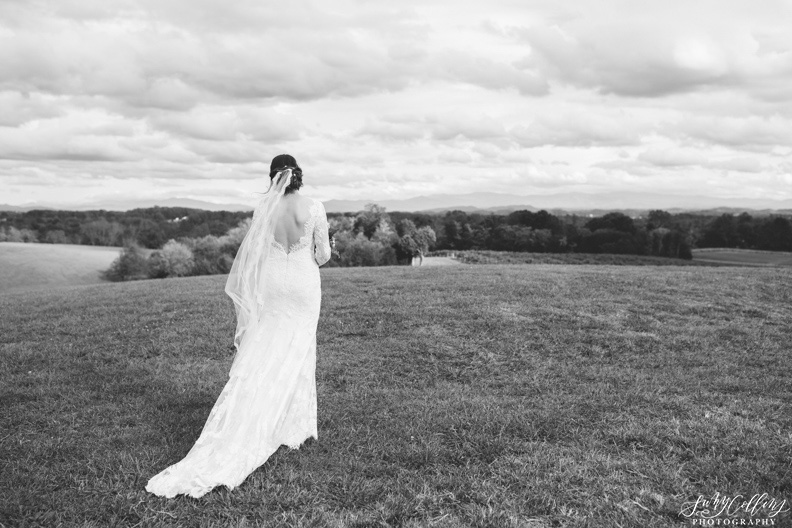 Black & White Wedding Portrait Vineyard