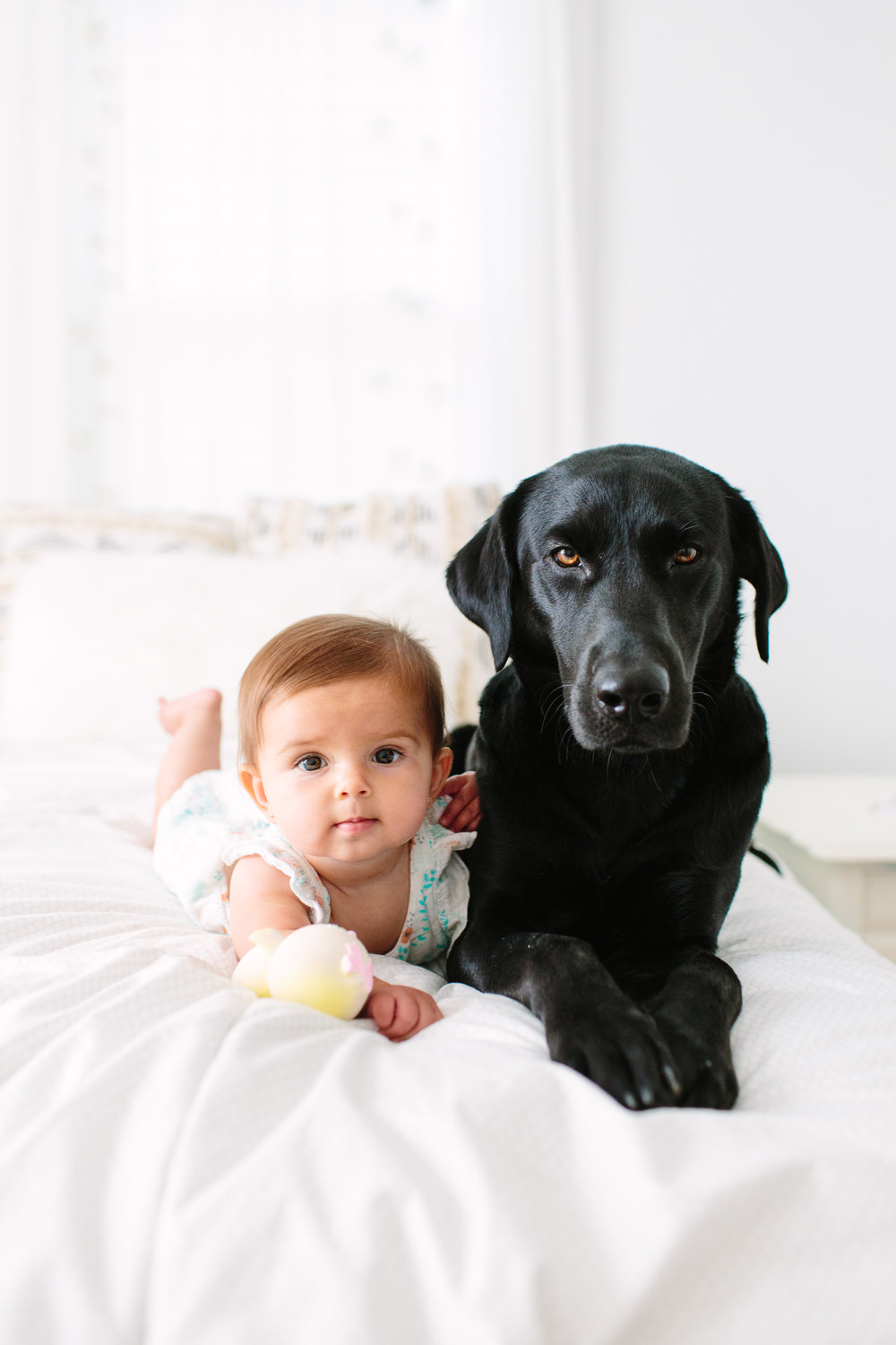 Puppy Before Baby? // Knoxville Photographer