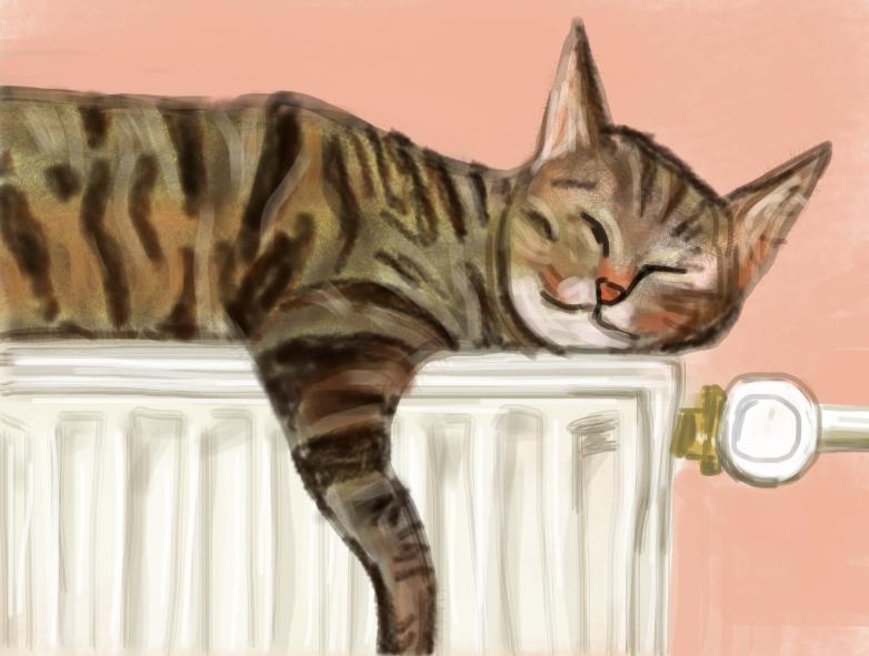 Cats in Art – Patrick Steen's Mister Tristan (Hockney)