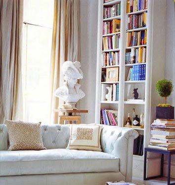 bookcases.dominoMagazineFiles.flickr