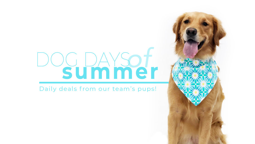 Katherine Way Dog Days of Summer Sale Banner.jpg