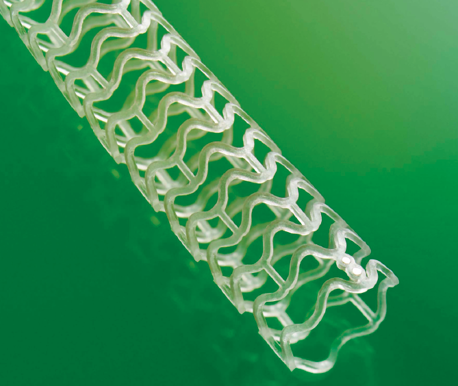 The Absorb GT 1 stent disintegrates in the body within three years.
