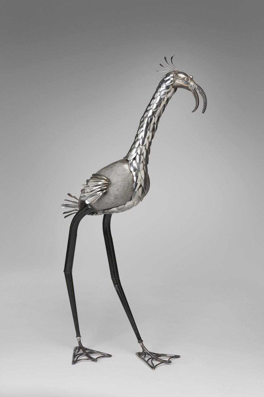 SC-Flamingo.jpg