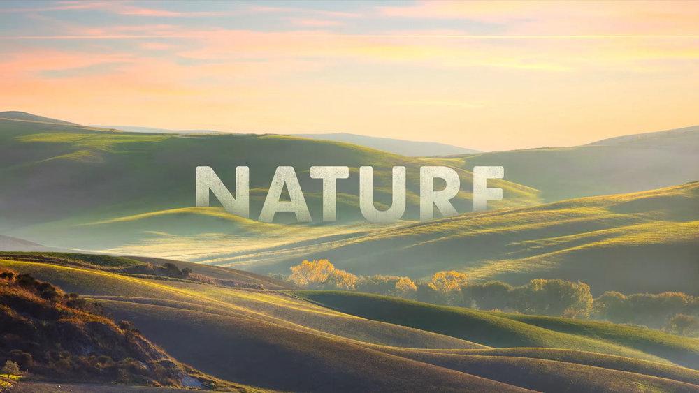 Natures Sweetness (1080p) (00103).jpg